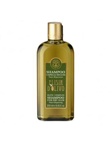 Shampoing pour cheveux secs